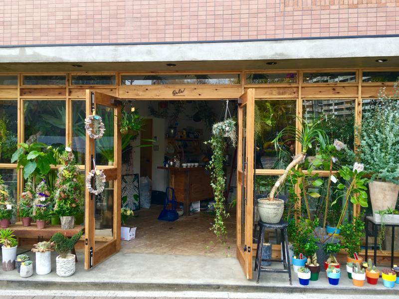 花 観葉植物 広島